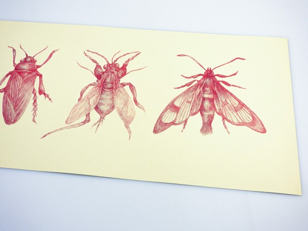 The Colour Out Of Space - Insects Poster small